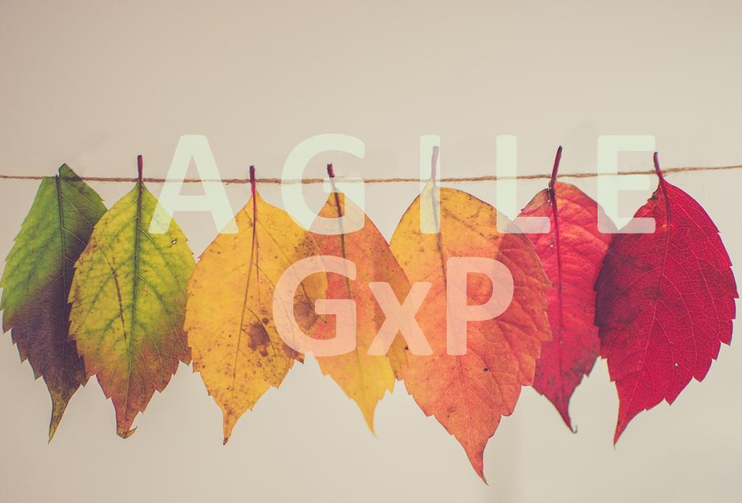 Agile GxP Systems Implementation