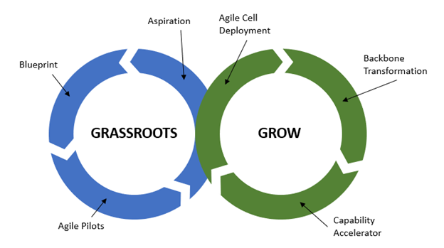 Agile GxP Systems Implementation from Grassroots to Grow.
